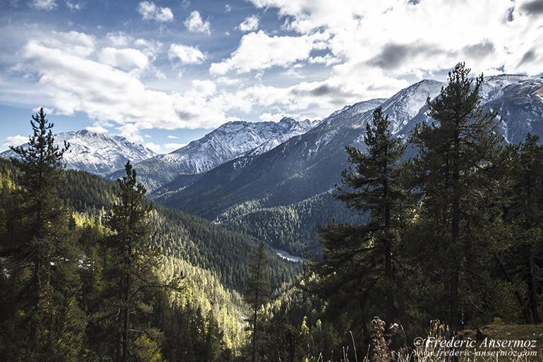 Zernez national park 13